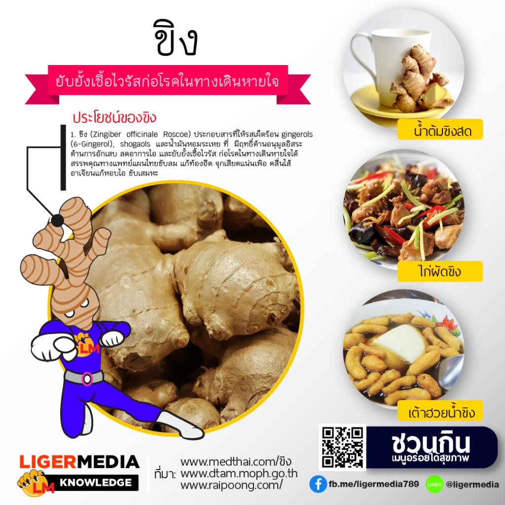 แสดงแระโยชน์ของขิงและอาหารที่แนะนำให้กิน ที่มีขิงเยอะ ๆ